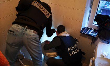 """Finalmente """"Maglia Rosa"""" è stato catturato (era il pusher della ciclabile della Val Seriana)"""
