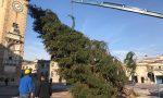 Le foto e il video dell'arrivo a Bergamo dell'albero di Natale donato dalla Val Seriana