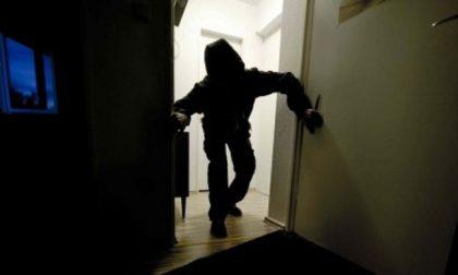 Faccia a faccia con i ladri che stanno entrando in camera da letto