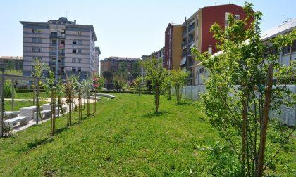"""A Bergamo il premio """"La Città per il verde"""" per la riqualificazione del giardino di via Mascagni"""