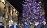 A Bergamo si accende la magia del Natale: ecco le luci multicolori dell'abete Natalino