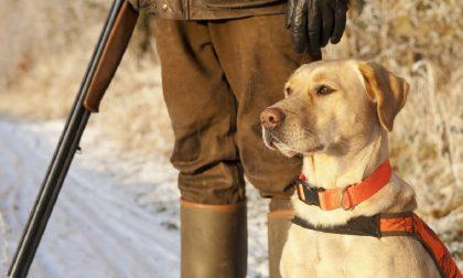 Incidente e infarto: morti due cacciatori di 66 e 60 anni nel fine settimana