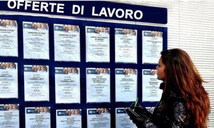 Cercate lavoro? Ecco tutte le offerte nei centri per l'impiego della Provincia di Bergamo