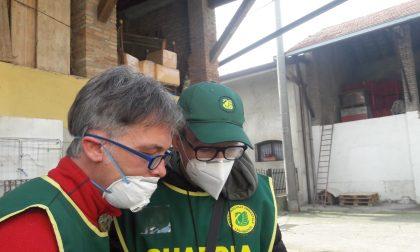 Legambiente Bergamo lancia il nuovo corso per diventare guardia zoofila