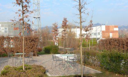 Al via i lavori del giardino de I Maestri del Paesaggio all'ospedale Papa Giovanni