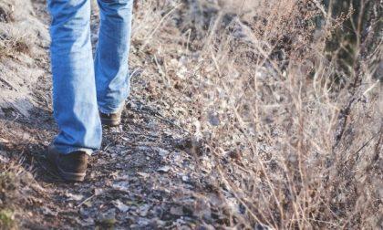 Litiga con la moglie e percorre 450 chilometri a piedi: multa di 400 euro