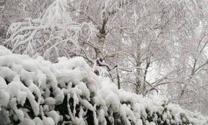 La «sciabolata artica» ci porterà la neve