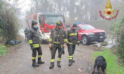 Cane finisce nel greto di un canale a Filago: il video del salvataggio dei vigili del fuoco