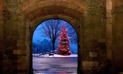 Grazie a quelli che, nonostante tutto, hanno acceso il Natale con le loro stupende luci