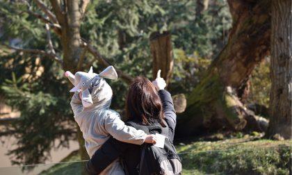 """Un carnevale """"bestiale"""" lunedì e martedì al Parco delle Cornelle"""
