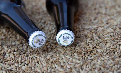 """Non solo birre artigianali: in provincia ci sono anche quelle """"contadine"""""""