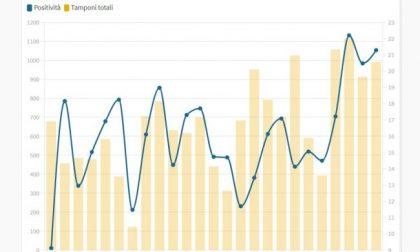 Dopo il Sebino, preoccupa la Bassa: i grafici che mostrano la crescita costante dei casi