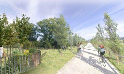 Ecco come sarà il Bosco della Memoria alla Trucca, dedicato alle vittime del Covid