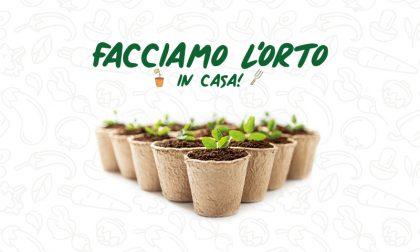 Facciamo l'orto in casa! In regalo con Prima Bergamo… 8 tipi di ortaggi diversi