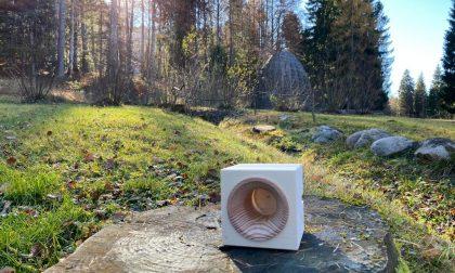Anche un'azienda bergamasca in campo per la rinascita dei boschi distrutti da Vaia