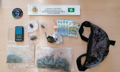 Festa abusiva in centro città: multati 12 adolescenti e sequestrati 100 grammi di droga