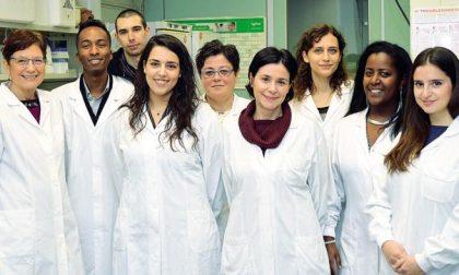 L'Istituto Mario Negri lancia una raccolta fondi per la ricerca di nuovi farmaci contro l'epilessia
