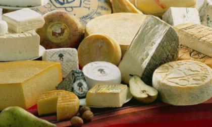 Sta per nascere il distretto del cibo di Bergamo, un progetto ambizioso e importante