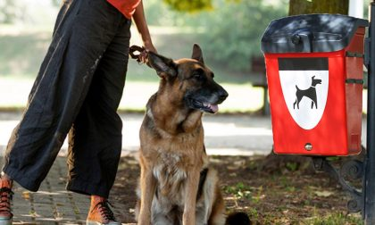 Niente cestini nella aree cani? Aprica: «Operatori aggrediti, tolti per sicurezza»