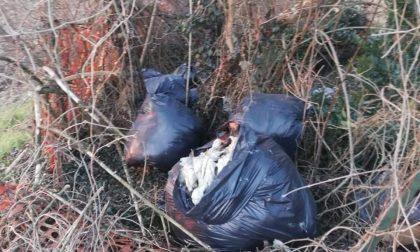 A Seriate 205 controlli degli ispettori ecologici nel 2020: calano i rifiuti abbandonati
