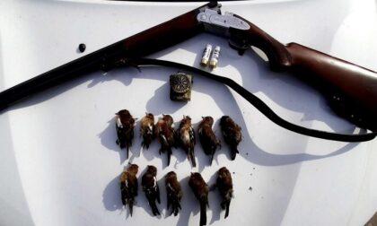 Cervi, pettirossi e caprioli abbattuti: la polizia provinciale contro il bracconaggio