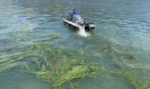 Tutela delle acque dei laghi d'Iseo e di Endine, al via gli interventi