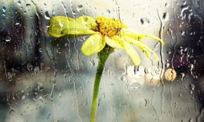 10 frasi in bergamasco sulla pioggia incessante