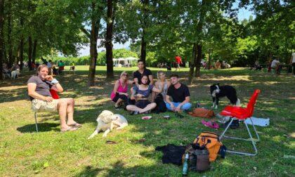L'area cuccioli al Parco cinofilo di Villa di Serio, un posto bellissimo anche per i padroni