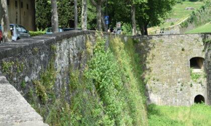 Ma avete visto in che stato sono ridotte le Mura a nord? Urge una ripulitura