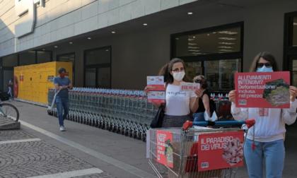 Sit-in di Greenpeace all'Esselunga di via Corridoni contro gli allevamenti intensivi
