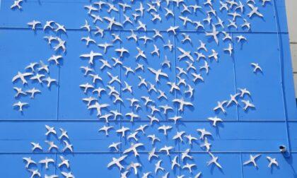 """La """"Speranza in un battito d'ali"""" dei ragazzi dell'Isis Oscar Romero di Albino"""