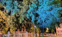 Bergamo1000... colori, suoni e profumi per la rinascita di piazzale Alpini
