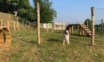 Apre il Dog's Park di Almenno San Bartolomeo: 2 mila metri quadrati di libertà per cani e padroni