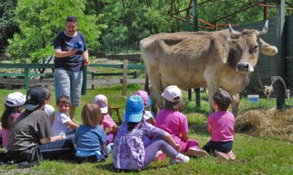 Gli alunni di due scuole bergamasche incontreranno Mattarella alla prima Festa dell'educazione alimentare
