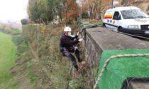 Orobicambiente cerca 8 volontari per poter continuare a prendersi cura delle Mura