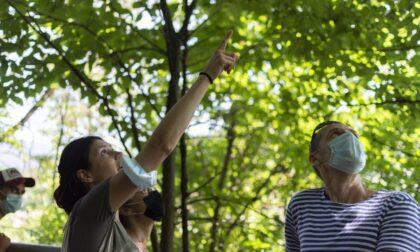 Torna Dirama, festival di Legambiente Bergamo dedicato alla natura e alla cura del territorio
