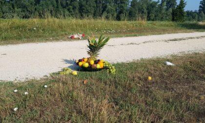 Frutta fresca, carcasse di polli e ceri di Padre Pio: l'ombra dei riti voodoo in riva al Serio