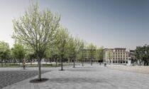 Fioriranno i ciliegi davanti a Palazzo Frizzoni: ecco le immagini del terzo lotto