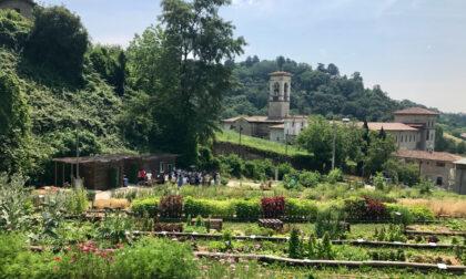 L'Orto Botanico di Bergamo non va in vacanza: ad agosto aperto sempre (feste comprese)