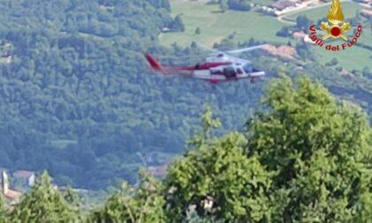 Cane finisce in una cavità sul Monte Linzone, salvato dai Vigili del fuoco
