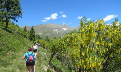 Val Seriana e Val di Scalve fanno il pieno di turisti: agosto da tutto esaurito