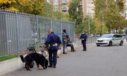 Non solo Tenai: al comando di polizia locale arriverà un nuovo cane antidroga