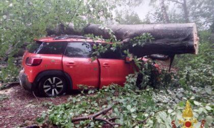 Danni da maltempo: Regione chiederà lo stato d'emergenza anche per Bergamo
