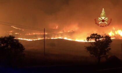 Gli incendi in Sicilia: Coldiretti Bergamo raccoglie fondi per aiutare le imprese agricole