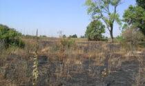 Pericolo d'incendi: la guida sui comportamenti corretti da adottare nel Parco del Serio