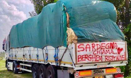 Sardegna chiama... Cologno risponde! Un camion di aiuti a pastori e allevatori dell'isola