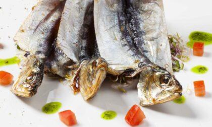 Cascina Clarabella promuove il pesce d'acqua dolce e la cucina del Lago d'Iseo