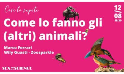 Come lo fanno gli animali? Te lo spiega giovedì (online) BergamoScienza!