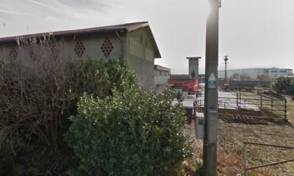 Intossicazione da botulino fa strage di mucche e vitelli in una cascina a Zanica