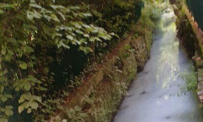 Il mistero (finora irrisolto) della roggia diventata bianca al Parco Suardi